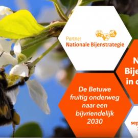 De Fruitmotor laat Nederland en de Betuwe zoemen op Nationale Bijenstrategiedag